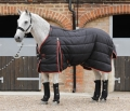 Stable-Buster-400g-Black-No-Neck-900x775-zoom.jpg