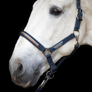 "Kantar Equestrian Queen ""Paris"" navy 24h"