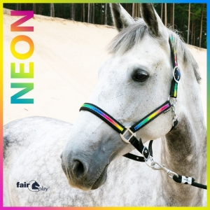 "Kantar Fair Play ""Neon""  24h"